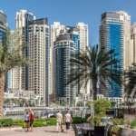 Les EAU annoncent la citoyenneté des investisseurs, des médecins, des professionnels qualifiés, des scientifiques et des personnes talentueuses